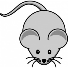 Mouse Color Decal