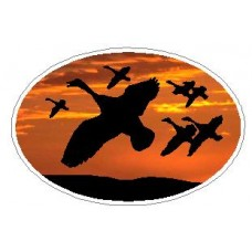 Oval Flying Ducks Decal