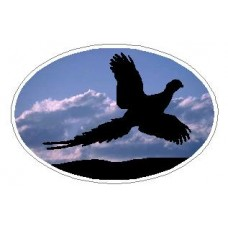 Oval Pheasant Decal