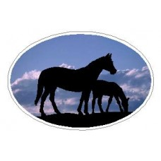 Oval Horse Decal