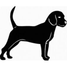 Beagle Dog Decal - 15C