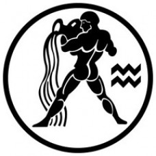 Aquarius Decal