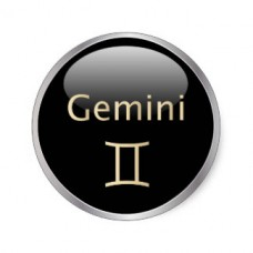 6 Small Round Zodiac Stickers Gemini