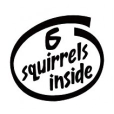 6 Squirrels Inside Decal