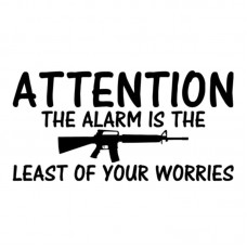 Alarm-b-font-Is-The-Least-Of-Your-Worries-Gun decal