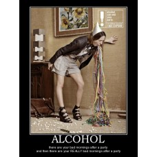 alcohol party alcohol demotivational