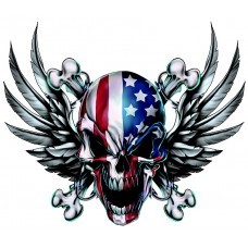 american eagle USA-skull with Eagle Wings