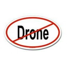 Anti Drone Oval Bumper Sticker