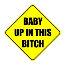 Baby Up In This Bitch Vinyl Car Sticker