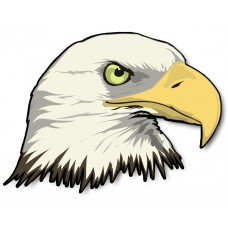 Bald Eagle Head Sticker