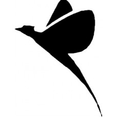 Bird Birds animal Car or Wall Vinyl Decal Sticker 11
