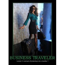 business travel pull off chauffeur