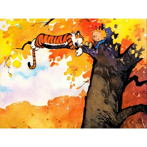 Calvin and Hobbes Rectangular Color Stickers 10
