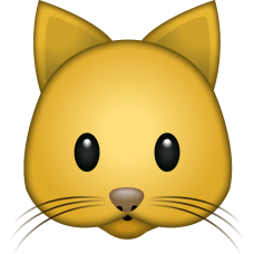 CAT_emoji_icon