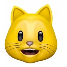 cat head yellow emoji
