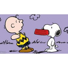 Charlie Brown and Snoopy FOOD Color Decal