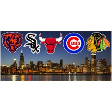 CHICAGO SKYLINE SPORTS WALL MURAL