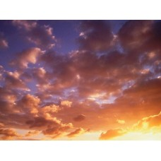 Counds and Sky Vinyl Wall Graphics 010