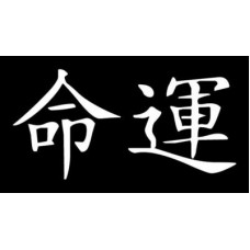 Destiny - Japanese Letters Vinyl International Decal