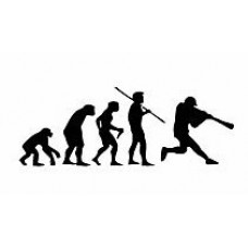 Evolution Sport Stickers BASEBALL