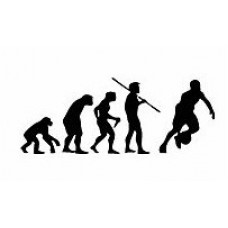 Evolution Sport Stickers BASKETBALL