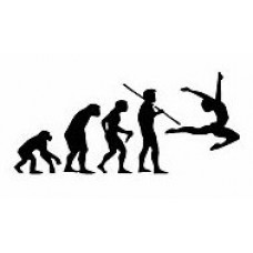 Evolution Sport Stickers DANCE