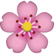 FLOWER Cherry_Blossom_Emoji