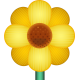 FLOWER Emoji_Blossom_Yellow