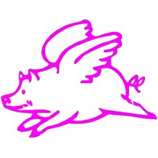 Flying Pig Funny Car Decal