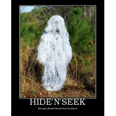 hidenseek hide seek person