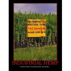 industrial hemp industrial hemp why bother