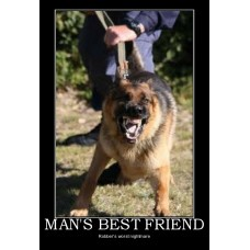 mans best friend attack dog