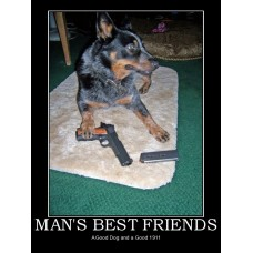 mans best friends dog 911