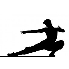Martial Arts Decal