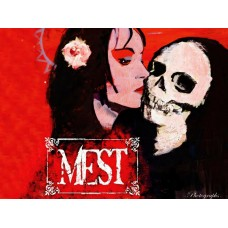 Mest Color Band Decal