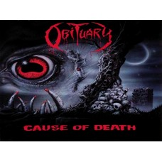 Obituary Color Band Decal