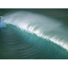 Oceans and Surf Wall Graphic Decals 01
