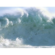 Oceans and Surf Wall Graphic Decals 04