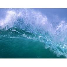 Oceans and Surf Wall Graphic Decals 06