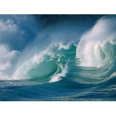 Oceans and Surf Wall Graphic Decals 07