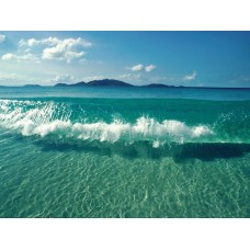 Oceans and Surf Wall Graphic Decals 08