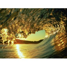 Oceans and Surf Wall Graphic Decals 09