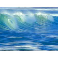 Oceans and Surf Wall Graphic Decals 10