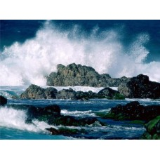 Oceans and Surf Wall Graphic Decals 13