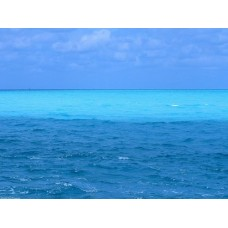 Oceans and Surf Wall Graphic Decals 15