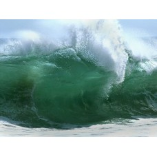 Oceans and Surf Wall Graphic Decals 18