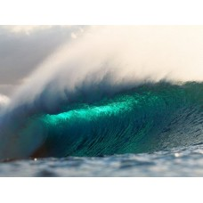 Oceans and Surf Wall Graphic Decals 19