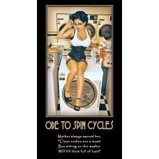 ode to spin cycles anybody got a quarter demotivational
