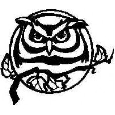Owl Decal
