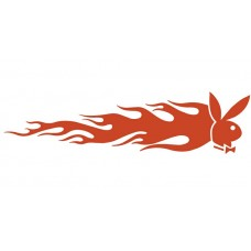 Playboy  Auto Flame Side Graphics (Pair)